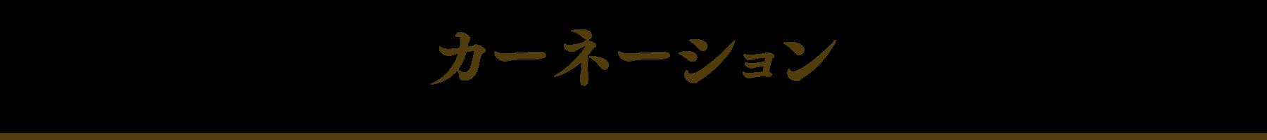 carnation_logo_indivipage