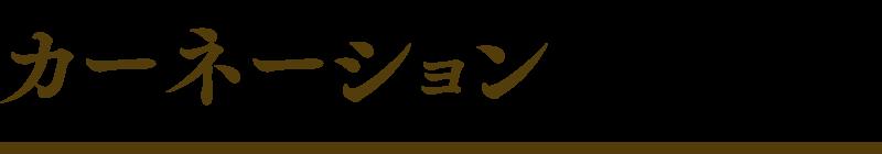 carnation_logo_listpage