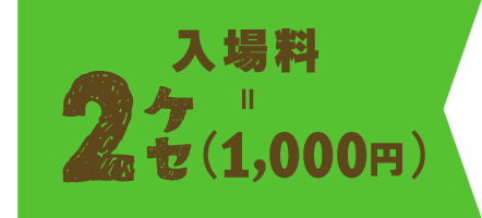 入場料2ケセ【1,000円